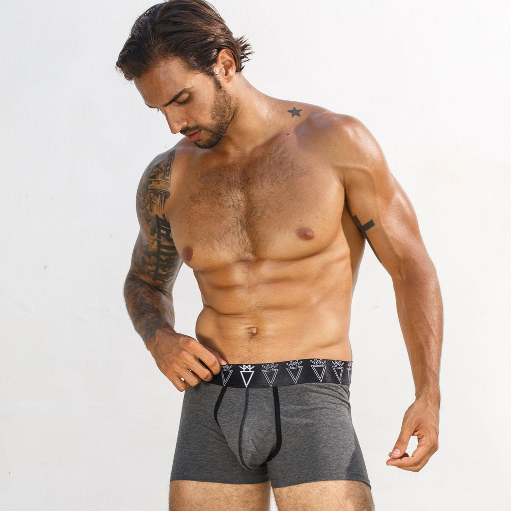 Boxer Briefs Gray