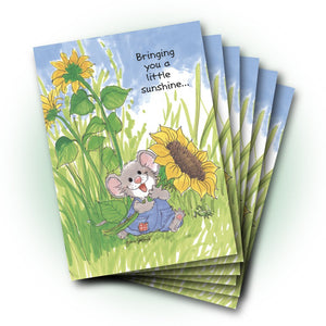 Herkimer Sunflower Friendship Cards