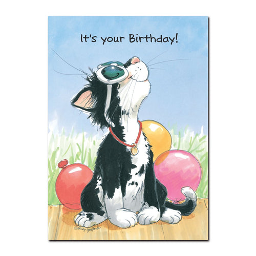 Natasha reflects in the wonderfulness of just being you in this Happy Birthday card from Wags and Whiskers, of Suzy's Zoo.