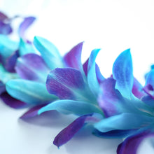 Purple and Blue Dyed Single Orchid Lei