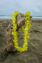 Single Green Orchid Lei