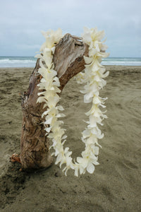 White Orchid Single Lei