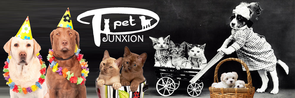 Pet Junxion
