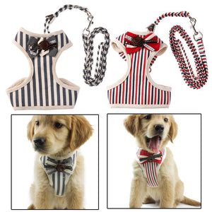 Pet Junxion accessories Gray / S Adjustable Bowtie Suit  Chest Vest Dog Harnesses