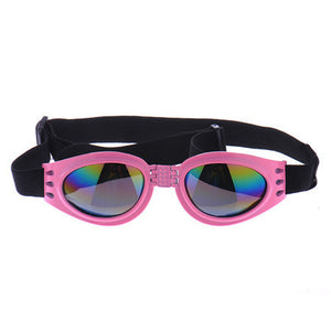 Protective Dog Glasses