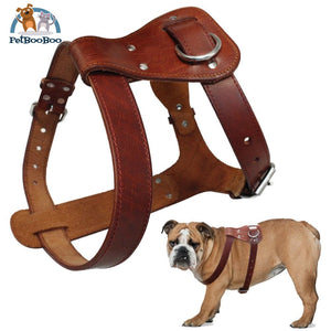 Genuine Leather Dog Harness Brown Real Dogs