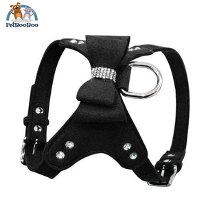 Harness Leather Dogs With Fancy Design Black / L Dogs
