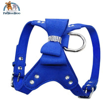 Harness Leather Dogs With Fancy Design Blue / L Dogs