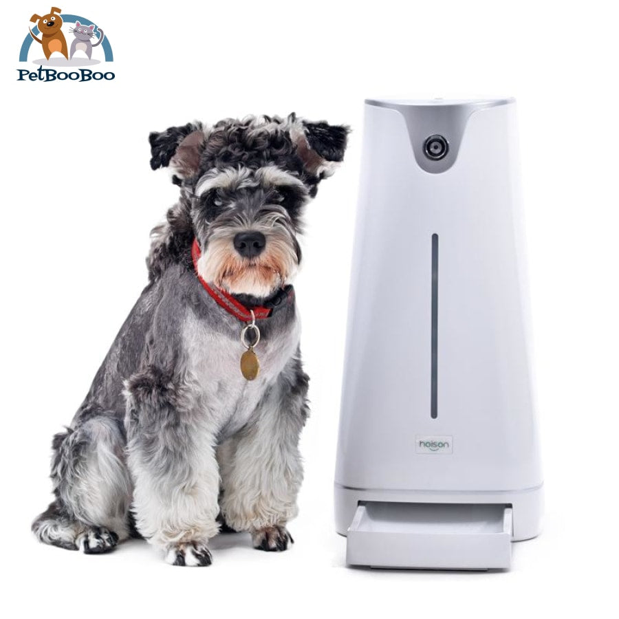 Pet Smart Feeder Automatic With Lcd Light Dispenser Electronic Timer Us Adapter / M China Pet Feeder