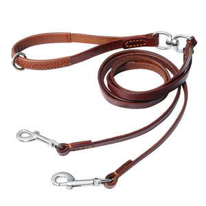 2 in 1 Dogs Leashes With Handle for Walking and Training