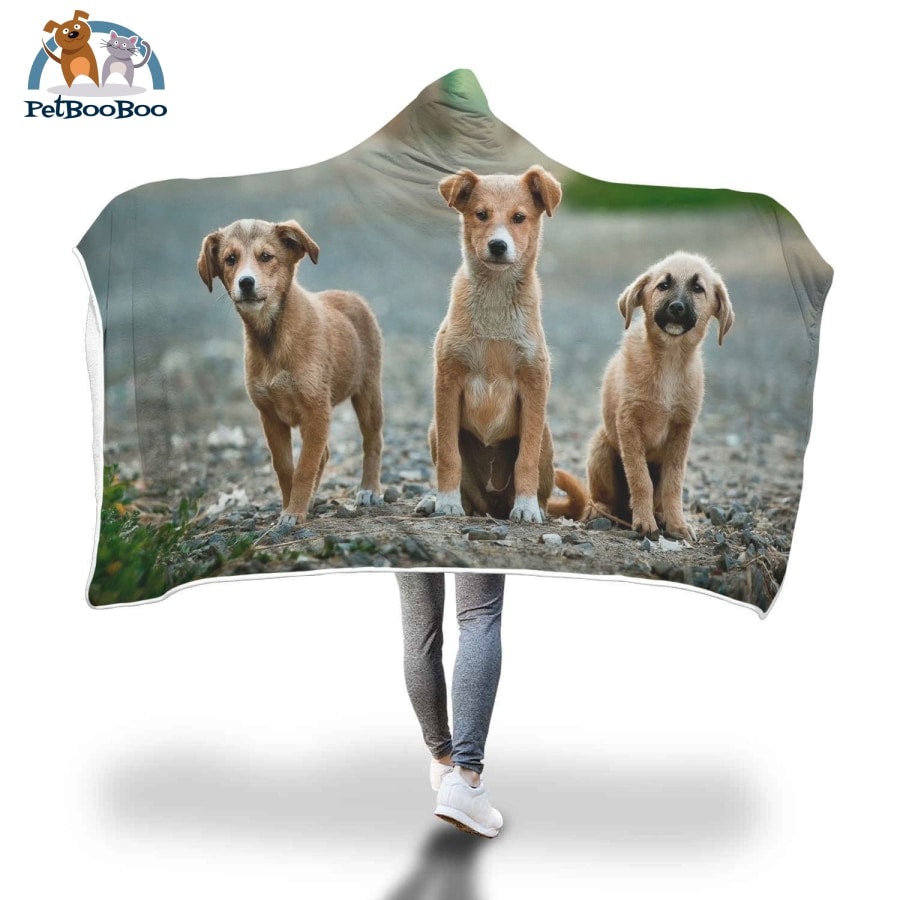 Three Dogs Hooded Blanket