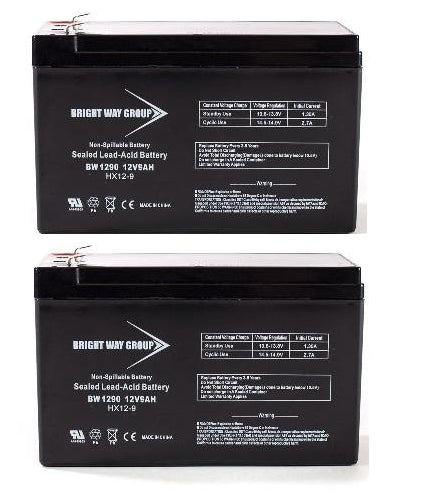 Rascal XTR 250 Lite - Pack is  (2) 12V 9AH F2 SLA Batteries