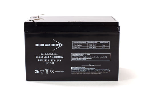 Bright Way Group BW 12120 F1 - 12V 12AH SLA Battery