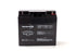Bright Way Group BW 12220 NB - 12V 22AH SLA Battery