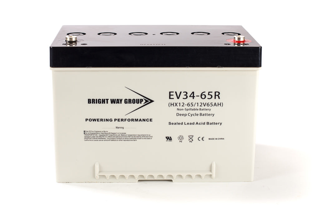 Bright Way Group BW EV-34 - 12V 65AH SLA Battery