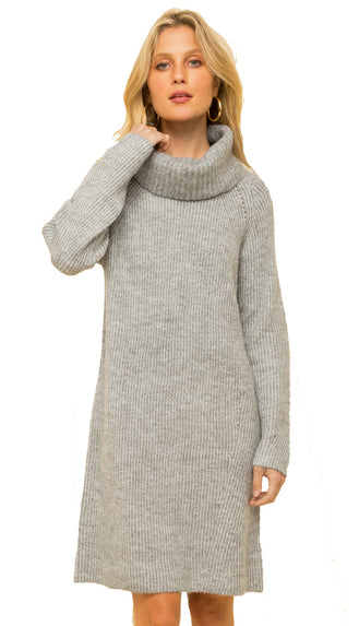 Cozy Cute Turtle Neck Sweater Dress- Lt. Grey