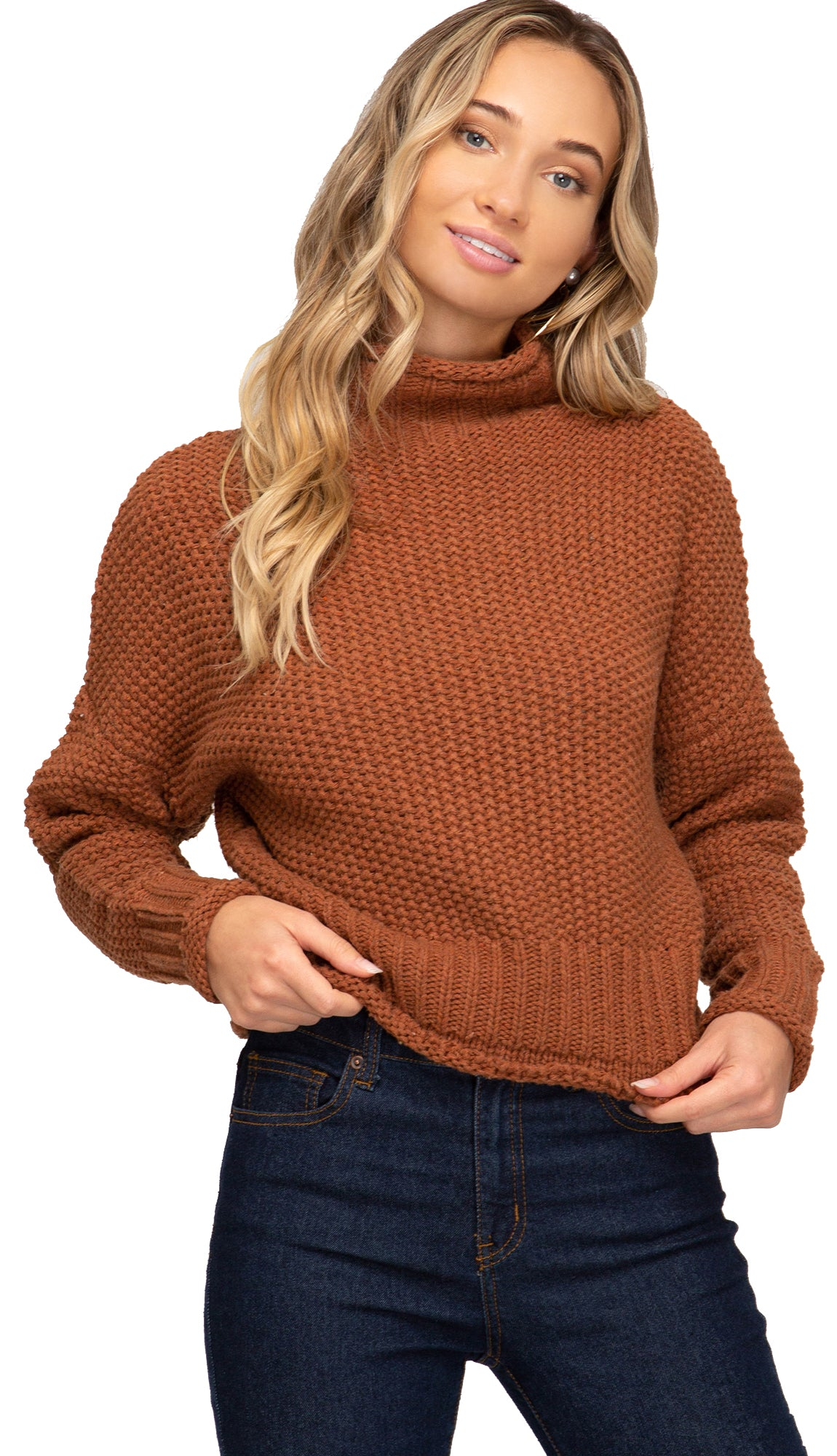 Picture This Turtle Neck Sweater- Black