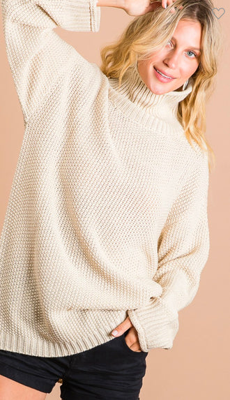 Longer Side Of Things Turtleneck Sweater Top- Oatmeal