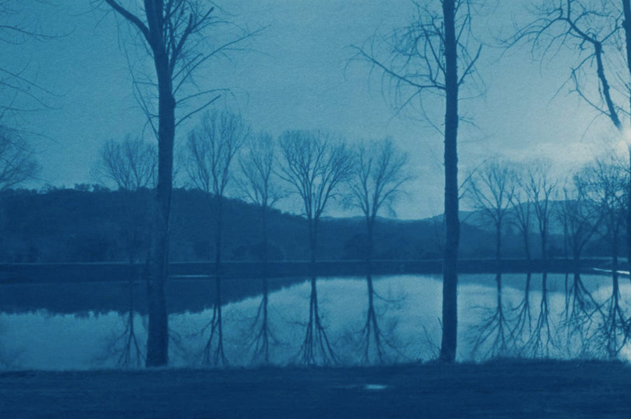 A Classical Photographic Process | Cyanotype