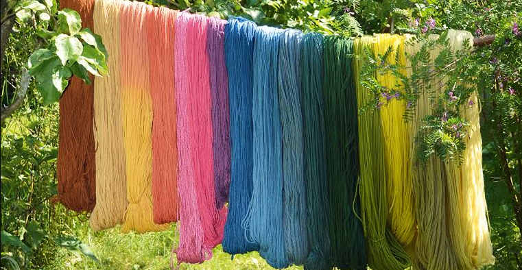 threads of different colors placed on rope surrounding trees
