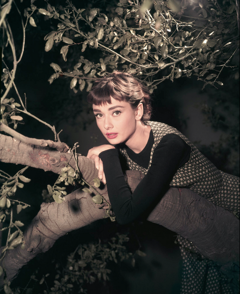 Audrey hepburn posing with the tree