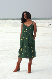 Lisa's Dress | Organic khadi dress with natural dye