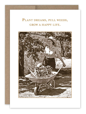 plant dreams pull weeds