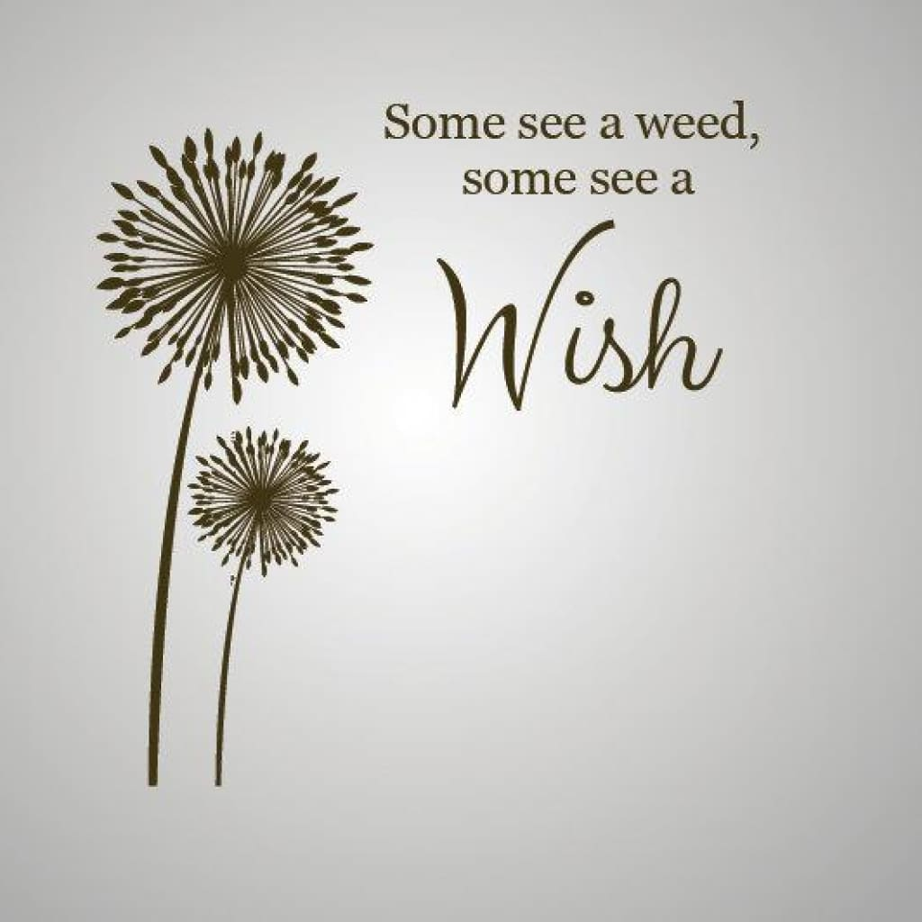Wall quote, some see a weed, some see a wish DB12   designedbeginnings