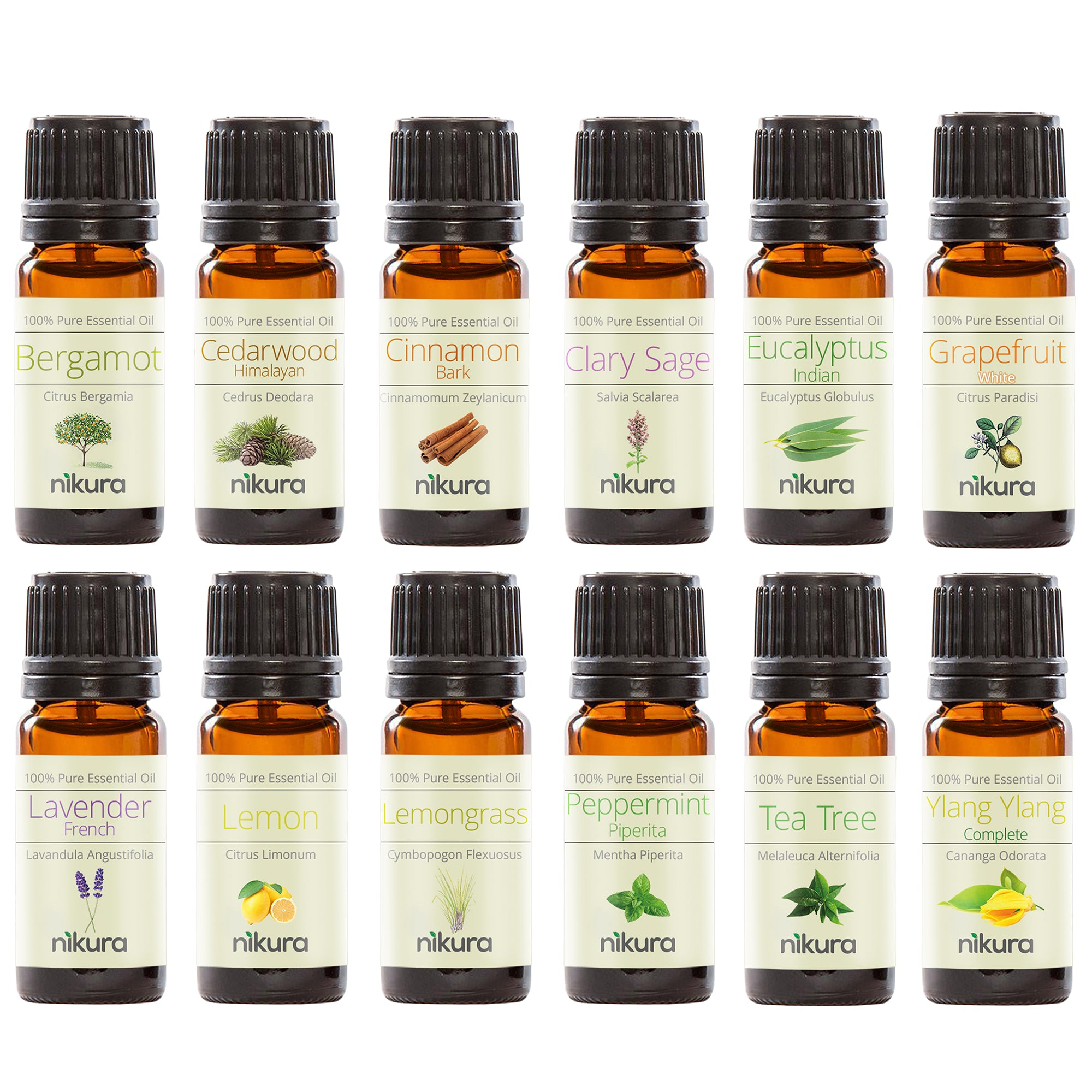 WOW Gift Set - 12 x 10ml Essential Oils