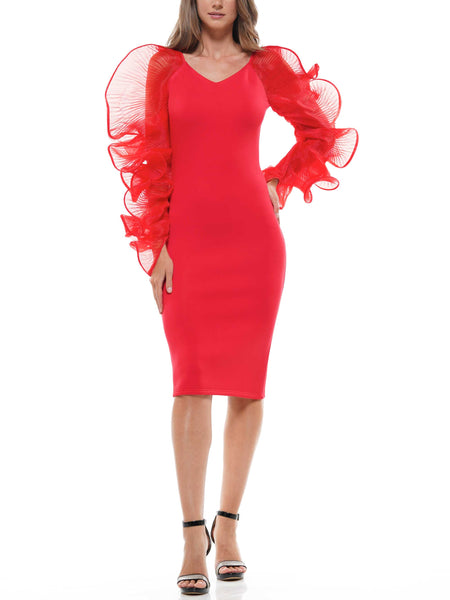 Organza sleeve holiday dress