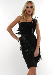 Feather Dress | Why Dress