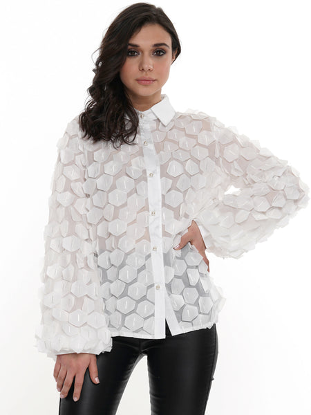 Puffy Hex Sheer Long Sleeve | Why Dress