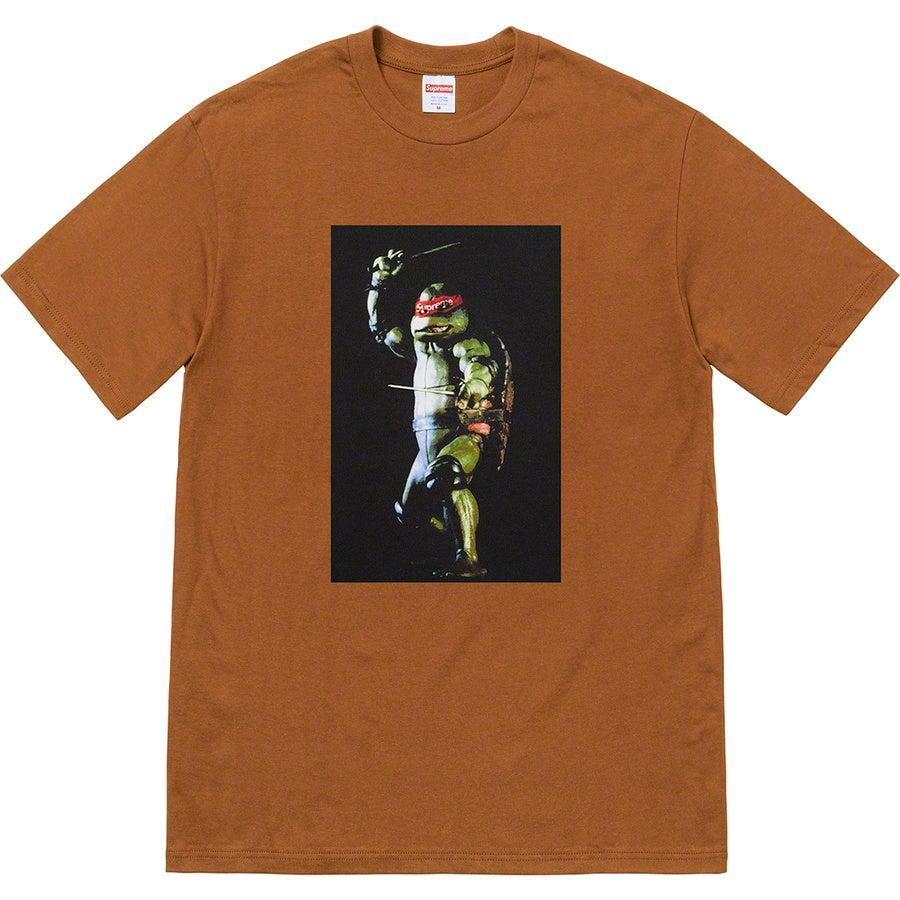 Supreme Raphael Tee (Brown) | Waves Never Die | Supreme | T-Shirt