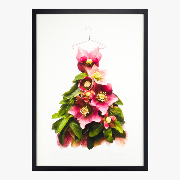 hellebore gown art print by petal & pins