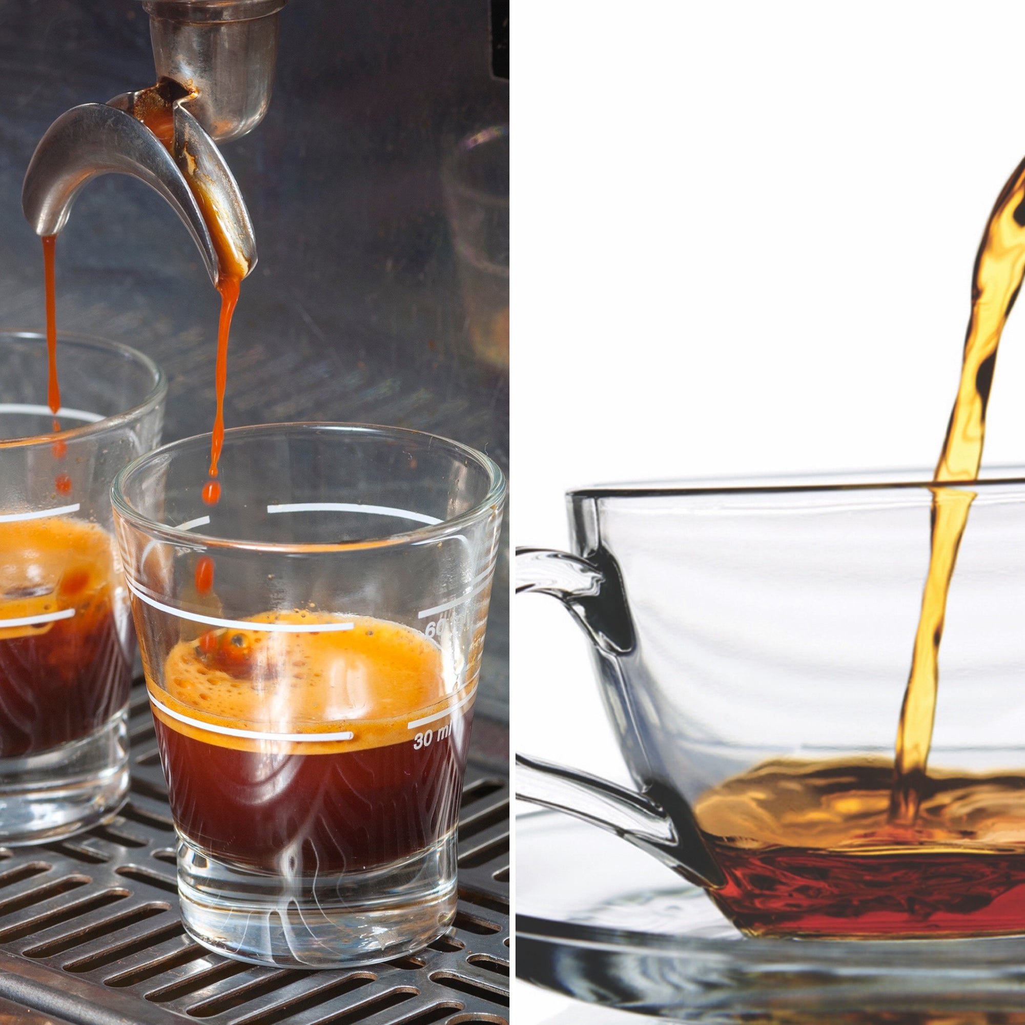 red espresso® rooibos has 10 X MORE antioxidants than traditionally brewed rooibos tea
