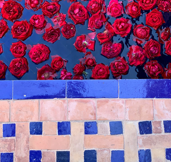 Surviving the Chaos of Marrakech - a How To