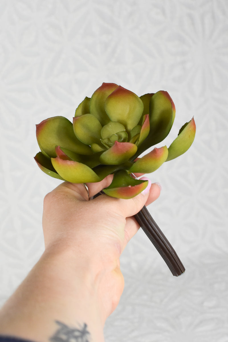 Soft Echeveria Pick