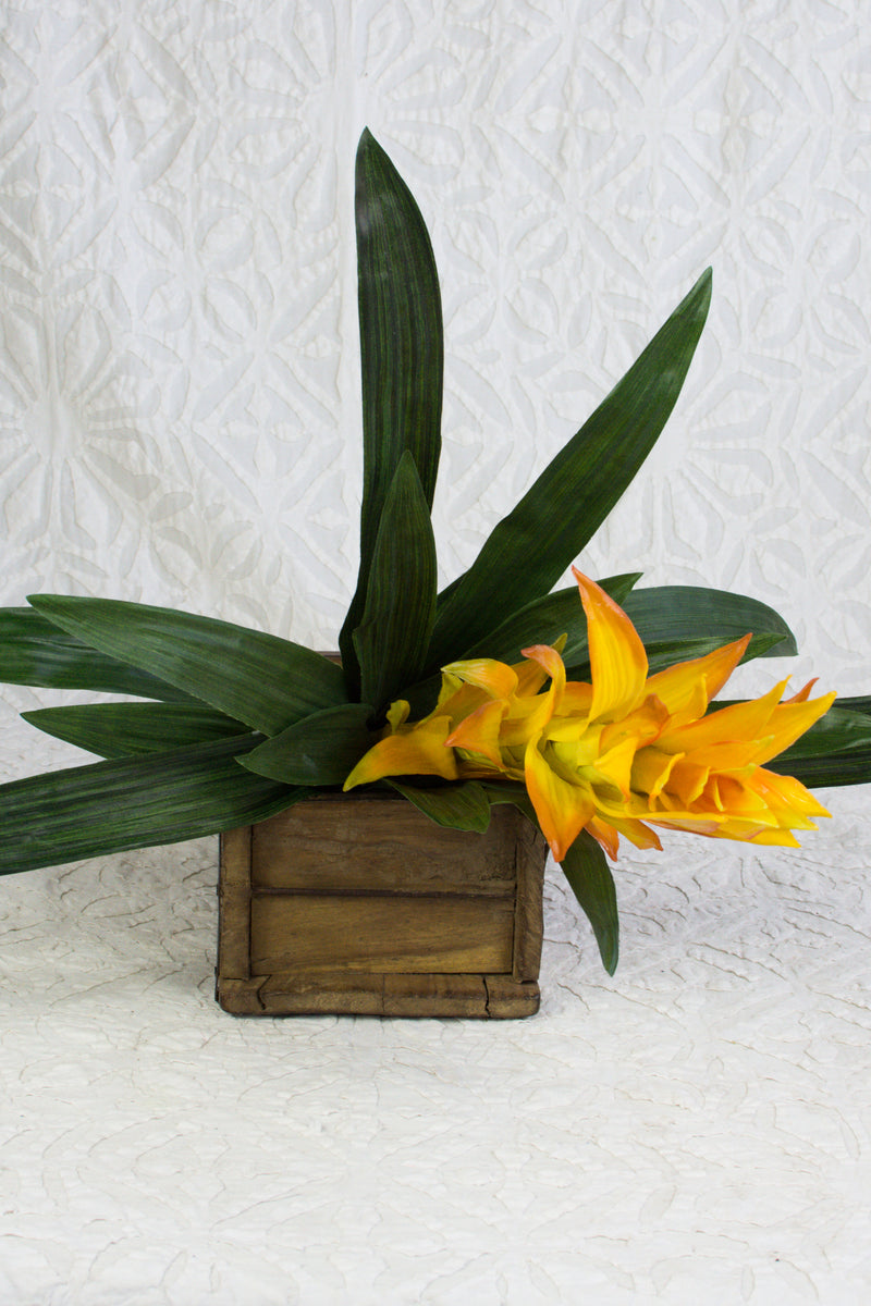 Bromeliad Stem in Vibrant Yellow