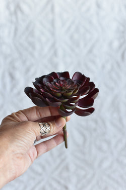 Faux Succulent Purple Echeveria 4""