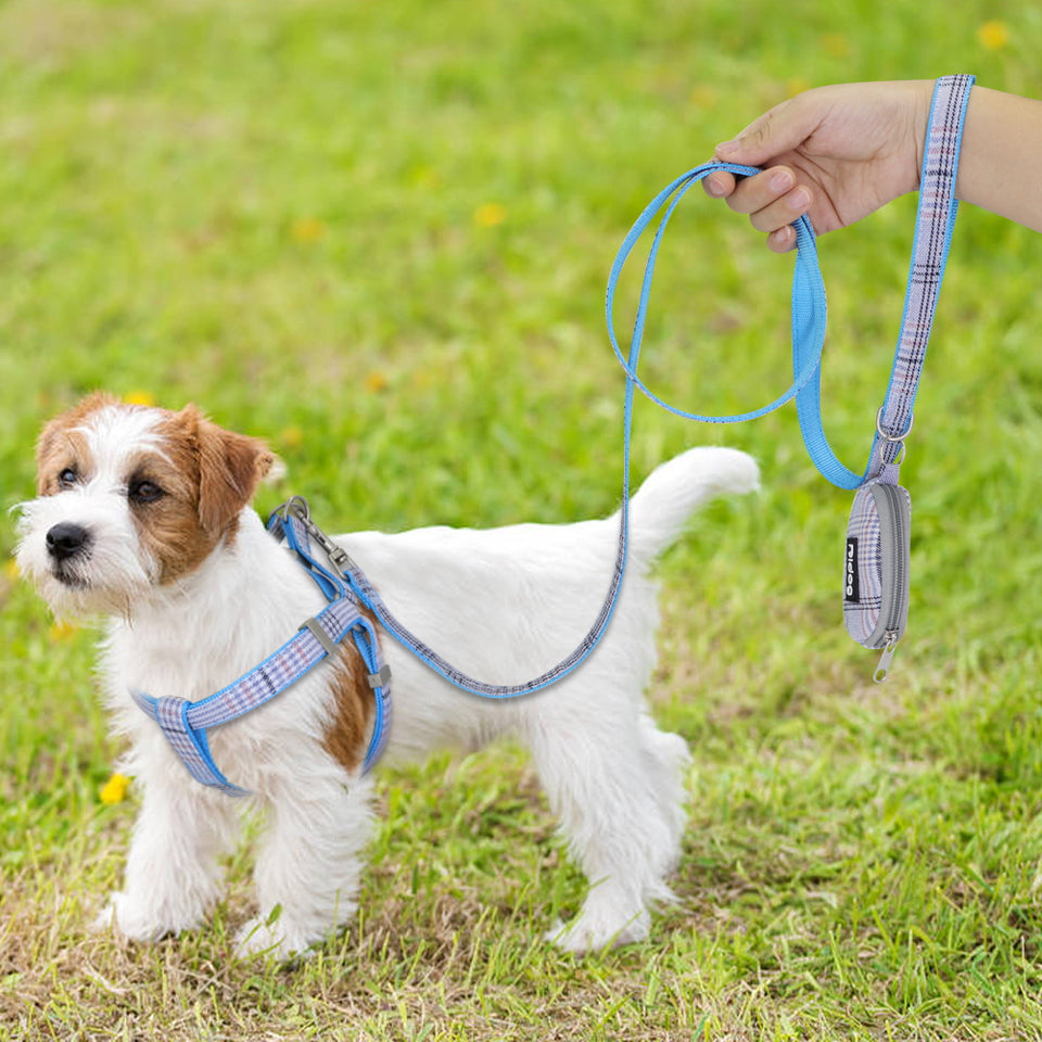 Plaid Harness & Leash Set - FURlosophie