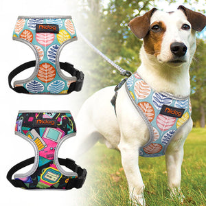 Spring/Summer Edit Harness - FURlosophie