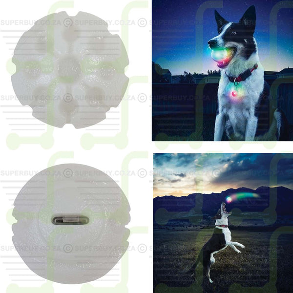 LED Ball Disc-O Dog Fetch Toy
