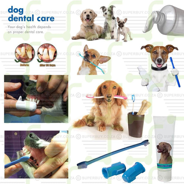 Canine Oral Care Toothpaste Pet Dental Care Kit