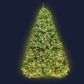 Jingle Jollys 1.8M 6FT Christmas Tree Xmas 1980 LED Lights Warm White 765 Tips