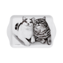 Load image into Gallery viewer, Ashdene Feline Friends Scatter Tray