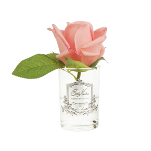 Côte Noire Perfumed Natural Touch Rose Bud in Clear - White Peach