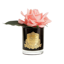 Load image into Gallery viewer, Côte Noire Perfumed Natural Touch Rose in Black - White Peach