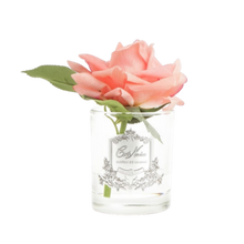 Load image into Gallery viewer, Côte Noire Perfumed Natural Touch Rose in Clear - White Peach