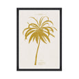 FA12758 Mind the Gap La Cocotier Coconut Tree Art Print