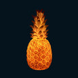 LED Pineapple Lamp Goodnight Light